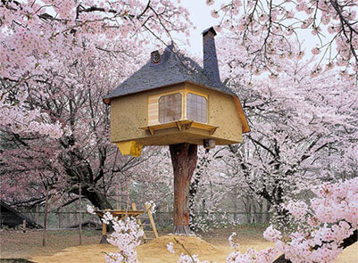 Famous Tree Houses 50 amazing treehouses from around the world - modscape
